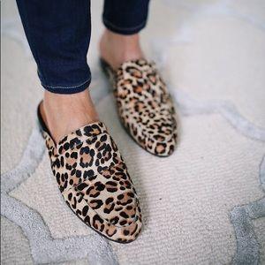 """""""Violet"""" Leopard Mules"""